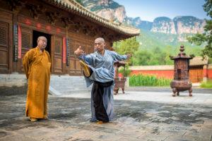 Kung-fu - bojové umění - fotografie - sport